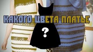 getlinkyoutube.com-#TheDress или какого цвета платье?