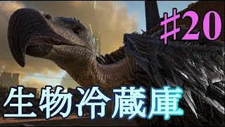 【ARK Scorched Earth 公式PVE鯖】お肉の鮮度を保つ!ハゲワシをテイム!【公式PVE鯖part20】【実況】