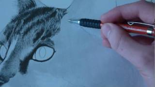 getlinkyoutube.com-How to Draw Animal Fur (Cats)