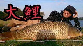 getlinkyoutube.com-大物釣り シーバスをルアーで狙ってたら巨鯉が釣れた!Carp Fishing
