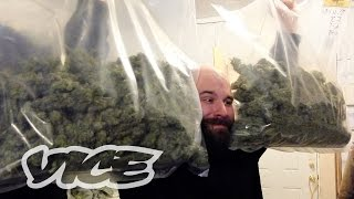 getlinkyoutube.com-The Cash Crop: Canadian Cannabis