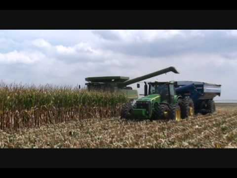 Corn Harvest in SW Kansas