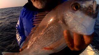 ψαρεμα,engetsu,και tenya,με νωπο