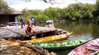 getlinkyoutube.com-Taman Wisata Alam - Hutan Mangrove Pantai Indah kapuk - Jakarta Utara