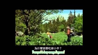 getlinkyoutube.com-學法文  - le papillon (法國電影: 蝴蝶) 中文字幕有 - 比恩語文(板橋)