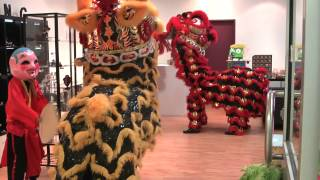 getlinkyoutube.com-Darwin Chung Wah Society Lion Dance Troupe - Blessing of Bling Jewellery and Taylor's Toy Box