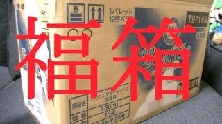 【福箱】 ゲーム福袋 開封動画をやりたかった 【2015年】