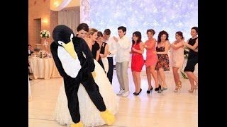 getlinkyoutube.com-PENGUINE DANCE ALBANIA
