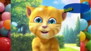 Balonku Ada Lima Lagu Anak Indonesia Populer Sepanjang Masa Dinyanyikan Kucing Lucu Gemesin Banget!