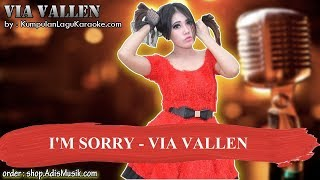I'M SORRY - VIA VALLEN Karaoke