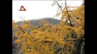 getlinkyoutube.com-[八大巨星] 春风吻上我的脸 + 春天是我们的 -- 大胜年  九寨沟的春天 (Official MV)