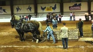 getlinkyoutube.com-2012 Nova Scotia provincial Exhibition Horsepull
