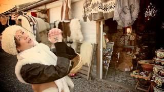 Polgár Peti és az Insect - Erdélyi mulatós (Official video FullHD)