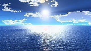 getlinkyoutube.com-عجائب خلق الله في البحر