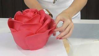 getlinkyoutube.com-EVERYDAY OBJECTS as cakes! - CAKE STYLE - Amazing Cake Decorating