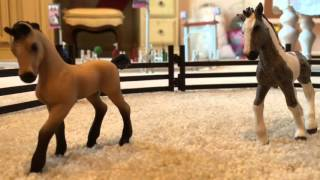 getlinkyoutube.com-Schleich Horse Movie - A Fault In Love Part 2 [300 subscribers special!]