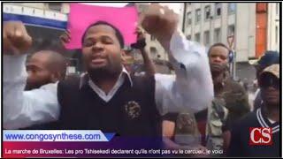 getlinkyoutube.com-La marche de Bruxelles: Les pro Tshisekedi déclarent qu'ils n'ont pas vu le cercueil; le voici