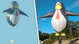 getlinkyoutube.com-Recorte PINGUIM solar 6 mts