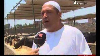 getlinkyoutube.com-صباح الخير يا مصر (2) 13-6-2011