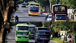 getlinkyoutube.com-Aksi Blong Kanan Jetbus SHD Efisiensi dan Rosalia Indah Oleng