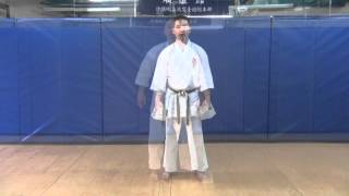 getlinkyoutube.com-Shisochin Kata DVD Excerpts