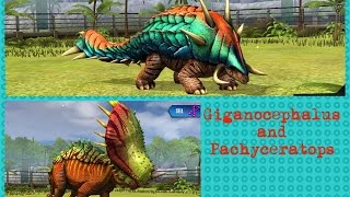 Jurassic World: The Game | Giganocephalus and Pachyceratops level 40