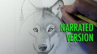 getlinkyoutube.com-How to Draw a Wolf (Narrated)