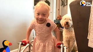 Dog Was SO Proud When Her Human Sister Finally Walked  | The Dodo width=