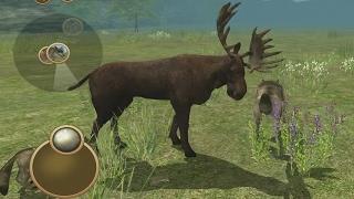 getlinkyoutube.com-Wild Wolf Simulator 3D Android Gameplay