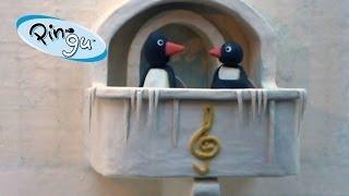 getlinkyoutube.com-Pingu: Pingu's Parents at a Concert