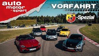 Abarth-Spezial: Was können die Skorpione? - Vorfahrt (Review)   auto motor und sport
