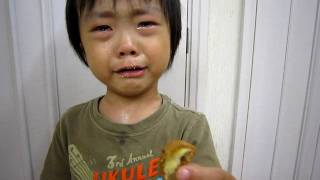 getlinkyoutube.com-2010 06 18 銘菓《ひよ子》が食べられないw@3歳6ヶ月