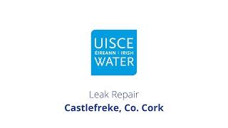 Video Thumbnail: #FixingLeaks | Castlefreke, Co. Cork