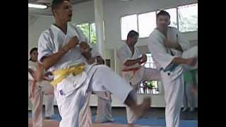 karate kyokushin mil chutes - adcgmscsul