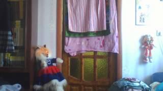 getlinkyoutube.com-Webcam video from January 21, 2013 12:44 PM