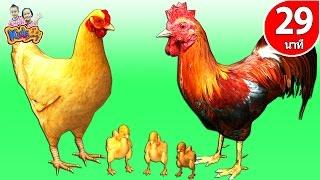getlinkyoutube.com-เพลงกุ๊กกุ๊กไก่   ก.เอ๋ย กอ ไก่  ลูกเป็ด 5 ตัว  รวมเพลงเด็กในตำนาน By KidsMeSong