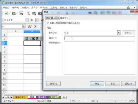 LibreOffice Calc 教學_驗證文字