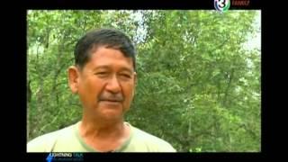 getlinkyoutube.com-Lightning Talk กับสายสวรรค์ ขยันยิ่ง ตอน เกษตรอินทรีย์เปลี่ยนชีวิต พิชิตความจน 14 07 57