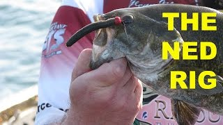 getlinkyoutube.com-How To Fish The Ned Rig | Bass Fishing