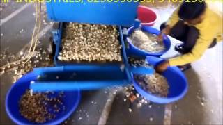 getlinkyoutube.com-Garlic Peeling Machine Plant Surat