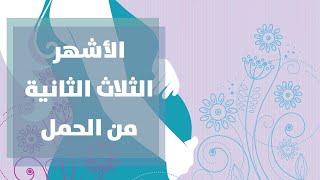 getlinkyoutube.com-الفترة الثانيه من الحمل مع رولا القطامي