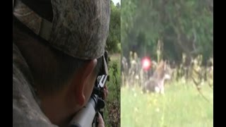 getlinkyoutube.com-9mm tracer bomb hits coyote in the head!