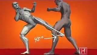 IKDES: Kyokushin Golpes de Karatê