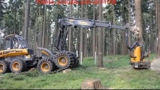 getlinkyoutube.com-สุดยอดเครื่องตัดต้นไม้ ที่คุณยังไม่เคยเห็น