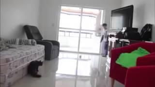 getlinkyoutube.com-Melhor goleiro do mundo gato Taffarel