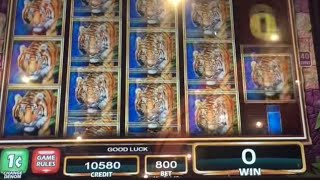 getlinkyoutube.com-Temple of the Tiger   Live Play   Double or Nothing   Max Bet $8 ** SLOT LOVER **