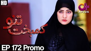 Kambakht Tanno - Episode 172 Promo | A Plus ᴴᴰ Drama | Shabbir Jaan, Tanvir Jamal, Sadaf Ashaan