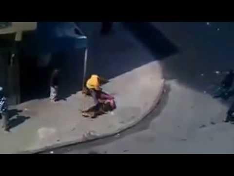 DOIS CÃES PASTOR ALEMÃO PROTEGEM DONO E ATACAM HOMEM