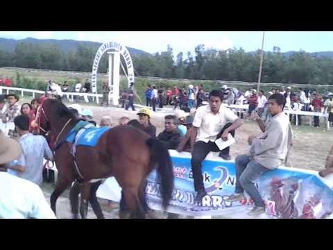 Pacuan Kuda. Kuda Stoner 1.600m Sawahlunto Derby. Kandi, 7 Desember 2014