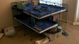 getlinkyoutube.com-Guinea Pig Mansion - 3 Story C&C Cage!